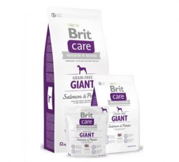 BRIT CARE GRAIN-FREE GIANT SALMON & POTATO 12 kg